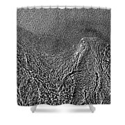 In The Moment Bw Three  Shower Curtain