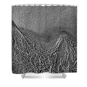 In The Moment Bw Two  Shower Curtain
