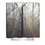 In The Morning Shower Curtain by Bill Cannon