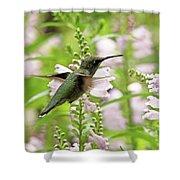In The Obedient Garden Shower Curtain