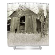 In The Pecan Orchard Shower Curtain