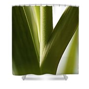 In The Spotlight Of Support Shower Curtain