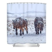 In The Storm Shower Curtain