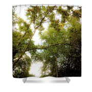 In The Summer Time When The Weather Was Fine Shower Curtain