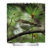 In The Treetops Shower Curtain