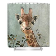 In The Wild 2 Shower Curtain