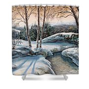 In The Winter In Carpathians.  Shower Curtain