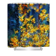In The Woods Again Shower Curtain