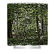 In The Woods Wc Shower Curtain