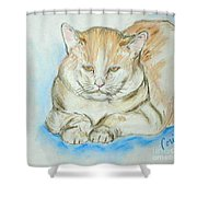In Waiting Shower Curtain
