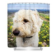 In Your Muzzle Shower Curtain