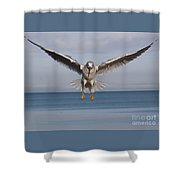 Incoming 2 Shower Curtain