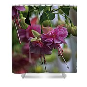 Incredible Fuschia Shower Curtain
