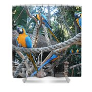 Incredible Sight Shower Curtain