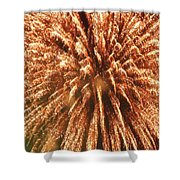 Independence Day Shower Curtain