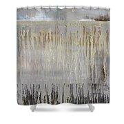 Independent Shower Curtain