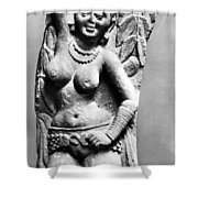 India: Jain Sculpture Shower Curtain