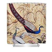 India: Peafowl, C1610 Shower Curtain