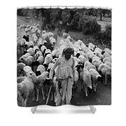 India: Shepherd, 1966 Shower Curtain