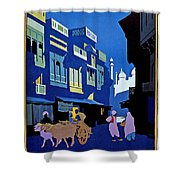 India Travel Poster Shower Curtain