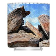 Indian Canyon Rocks Shower Curtain