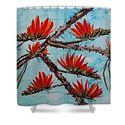 Indian Coral Tree Shower Curtain