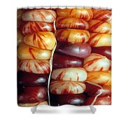 Indian Corn Patterns Shower Curtain