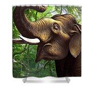 Indian Elephant 1 Shower Curtain