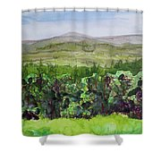 Hour Pond Mountain, Indian Lake Overlook Panorama 2 Shower Curtain