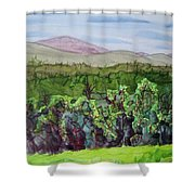 Chimney Mountain, Indian Lake Overlook Panorama 4 Shower Curtain