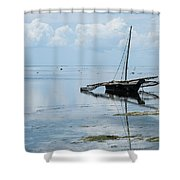 Indian Ocean At Lowtide Shower Curtain