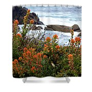 Indian Paintbrush At Point Lobos Shower Curtain