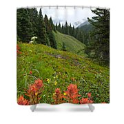 Indian Paintbrush Window Into The San Juans Shower Curtain