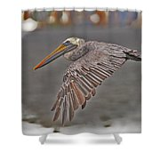 Indian Pelican 2 Shower Curtain