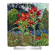 Indian Spring Shower Curtain