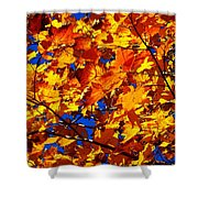 Indian Summer ... Shower Curtain