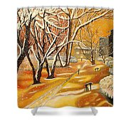 Indian Summer Wish Shower Curtain by Milagros Palmieri