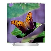 Indiana Angel Wing Shower Curtain