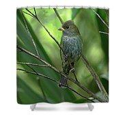 Indigo Bunting - Felts Nature Preserve - Ellenton Florida Shower Curtain