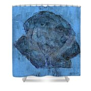 Indistincint Blues Shower Curtain