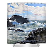 Indomitable Rock Shower Curtain