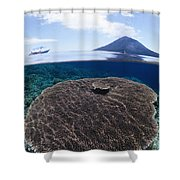 Indonesia, Coral Reef Shower Curtain