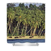 Indonesian Beach Shower Curtain