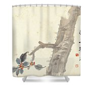 Indus Shower Curtain