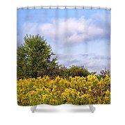 Infinite Gold Sunlight Landscape Shower Curtain
