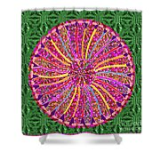 Infinity Star Flower An Abstract Fineart Expression By Navinjoshi At Fineartamerica Colorful Fun Shower Curtain