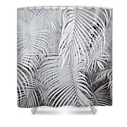 Infrared Palm Abstract Shower Curtain