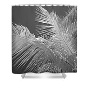 Infrared Palm Trees Shower Curtain