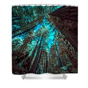 Infrared Redwood Shower Curtain