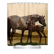 Inherit The Wind Shower Curtain by Corey Ford